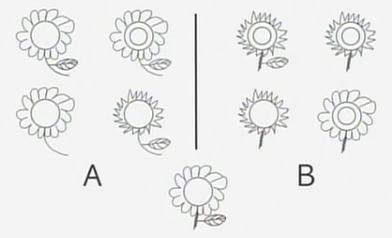 flower test.jpg